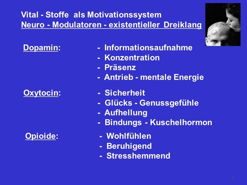 65 Vital - Stoffe als Motivationssystem Neuro - Modulatoren - existentieller Dreiklang Dopamin:- Informationsaufnahme - Konzentration - Präsenz - Antr