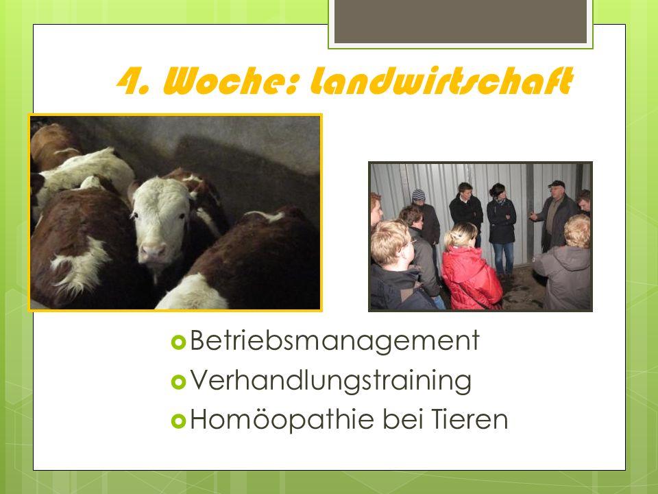4. Woche: Landwirtschaft Betriebsmanagement Verhandlungstraining Homöopathie bei Tieren