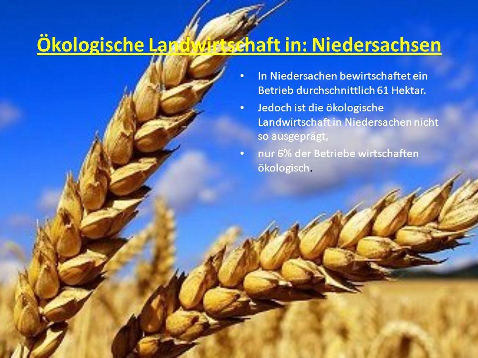 Ökologische Landwirtschaft in: Niedersachsen In Niedersachen bewirtschaftet ein Betrieb durchschnittlich 61 Hektar. Jedoch ist die ökologische Landwir
