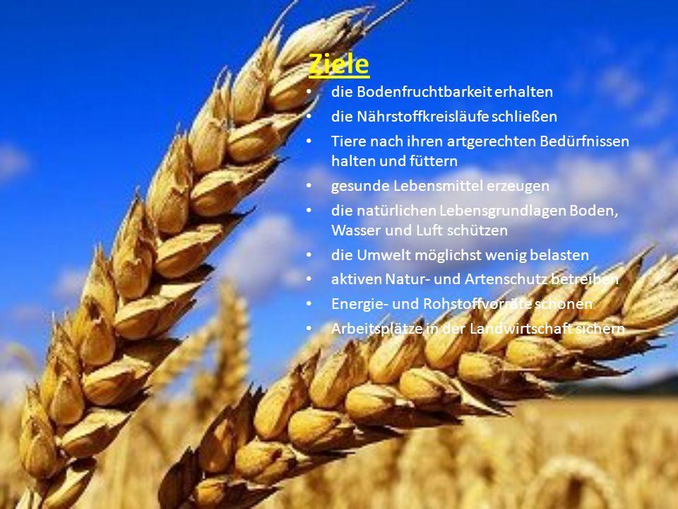 Vorteile gesünder natürlich: ohne Zusatz- und Schadstoffe keine Lebensmittelskandale keine Massentierhaltung besser für die Umwelt gut für Allergiker