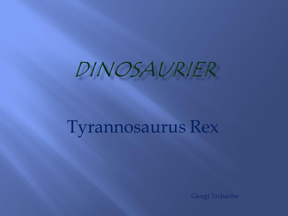 Tyrannosaurus Rex Giorgi Tschaidse