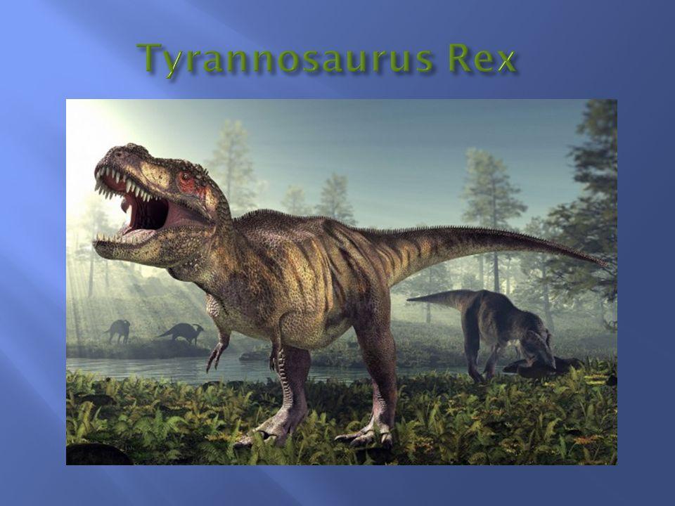 Lebte vor 66 Mio.Jahren bis vor 68 Mio.