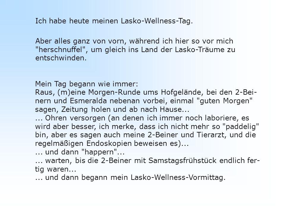 Ich habe heute meinen Lasko-Wellness-Tag.