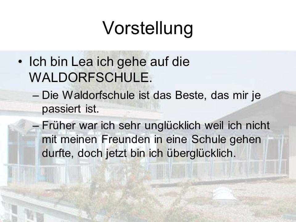 Warum Waldorfschule.