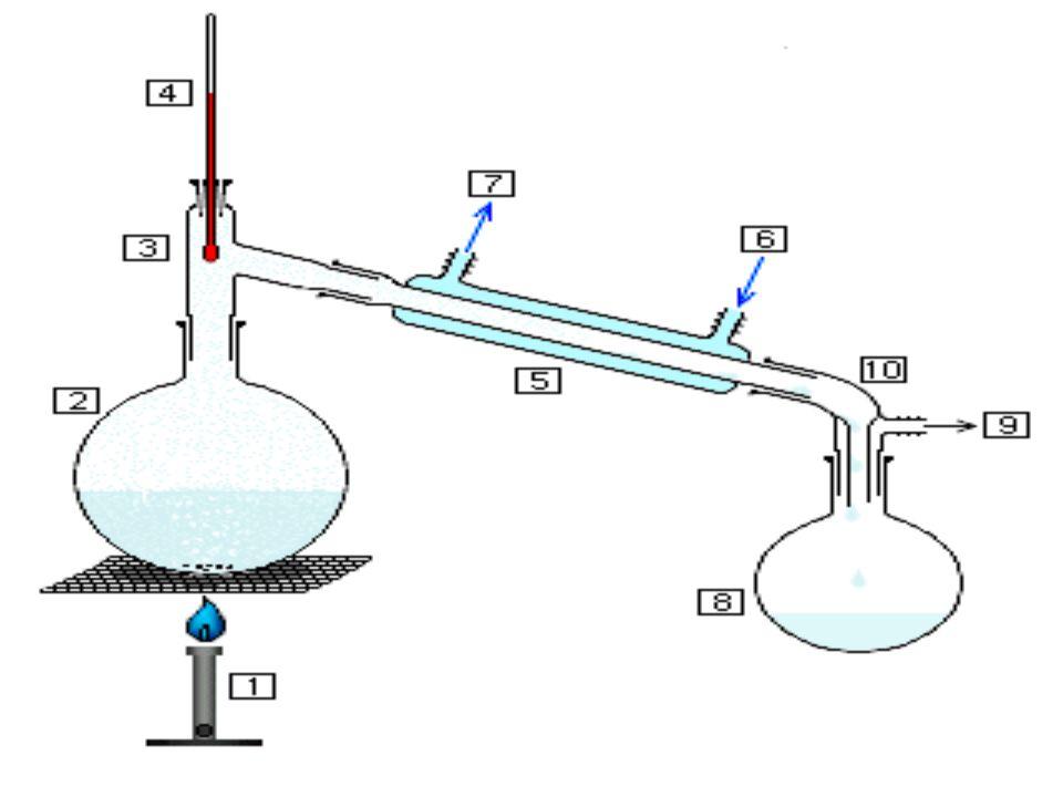 3. Chemischer Hintergrund Extraktion
