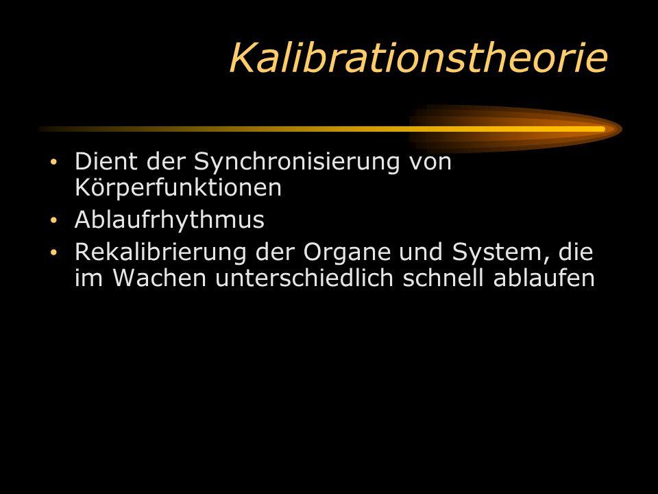 Kalibrationstheorie Dient der Synchronisierung von Körperfunktionen Ablaufrhythmus Rekalibrierung der Organe und System, die im Wachen unterschiedlich