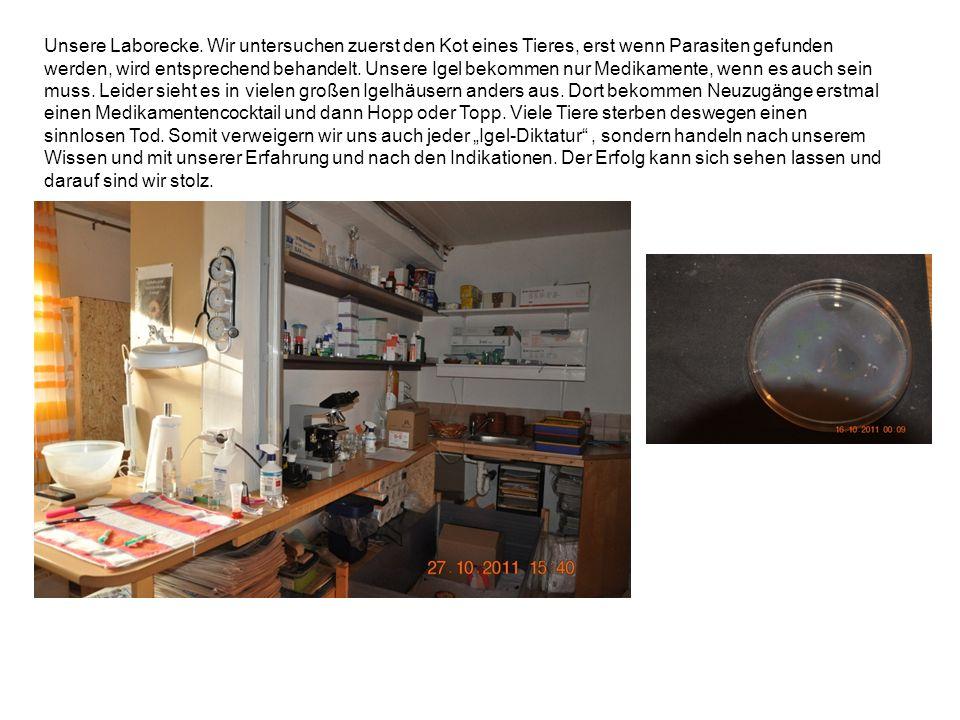 Unsere Laborecke. Wir untersuchen zuerst den Kot eines Tieres, erst wenn Parasiten gefunden werden, wird entsprechend behandelt. Unsere Igel bekommen