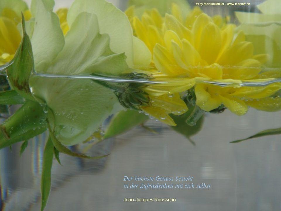 Die Normalität ist eine gepflasterte Straße; man kann gut darauf gehen - doch es wachsen keine Blumen auf ihr. Vincent van Gogh © by Monika Müller www