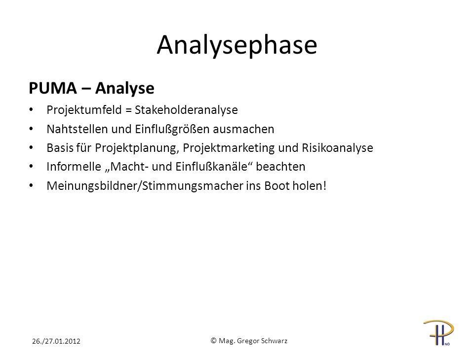 PUMA – Analyse Projektumfeld = Stakeholderanalyse Nahtstellen und Einflußgrößen ausmachen Basis für Projektplanung, Projektmarketing und Risikoanalyse