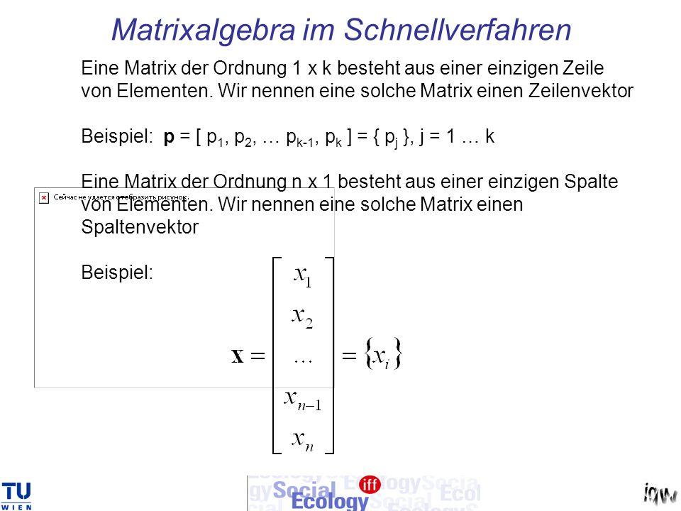 Matrixalgebra im Schnellverfahren Eine Matrix der Ordnung 1 x k besteht aus einer einzigen Zeile von Elementen. Wir nennen eine solche Matrix einen Ze