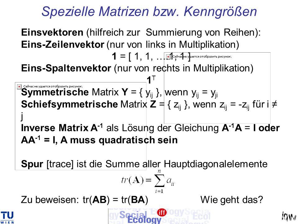 Spezielle Matrizen bzw. Kenngrößen Einsvektoren (hilfreich zur Summierung von Reihen): Eins-Zeilenvektor (nur von links in Multiplikation) 1 = [ 1, 1,