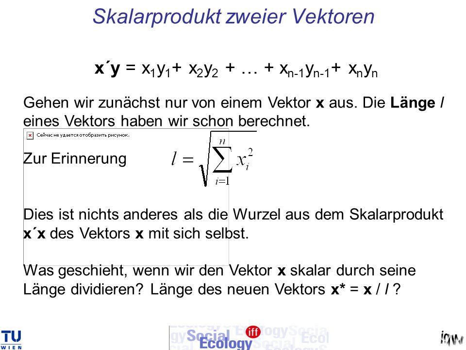 Skalarprodukt zweier Vektoren x´y = x 1 y 1 + x 2 y 2 + … + x n-1 y n-1 + x n y n Gehen wir zunächst nur von einem Vektor x aus. Die Länge l eines Vek