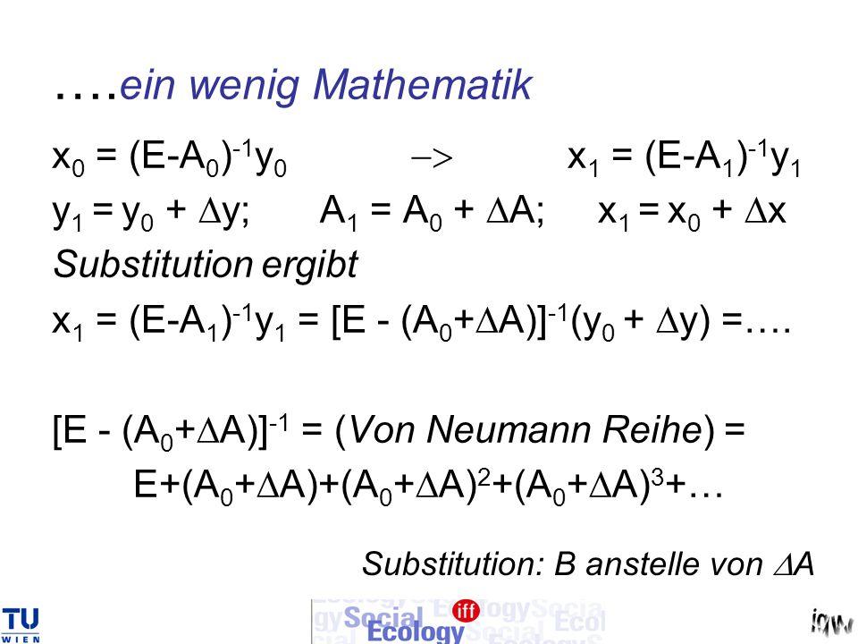 …. ein wenig Mathematik x 0 = (E-A 0 ) -1 y 0 x 1 = (E-A 1 ) -1 y 1 y 1 = y 0 + y; A 1 = A 0 + A; x 1 = x 0 + x Substitution ergibt x 1 = (E-A 1 ) -1