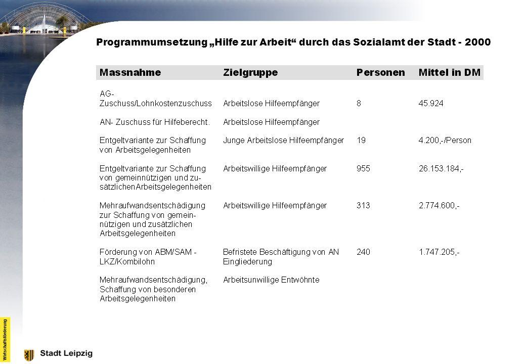 Programmumsetzung Hilfe zur Arbeit durch das Sozialamt der Stadt - 2000