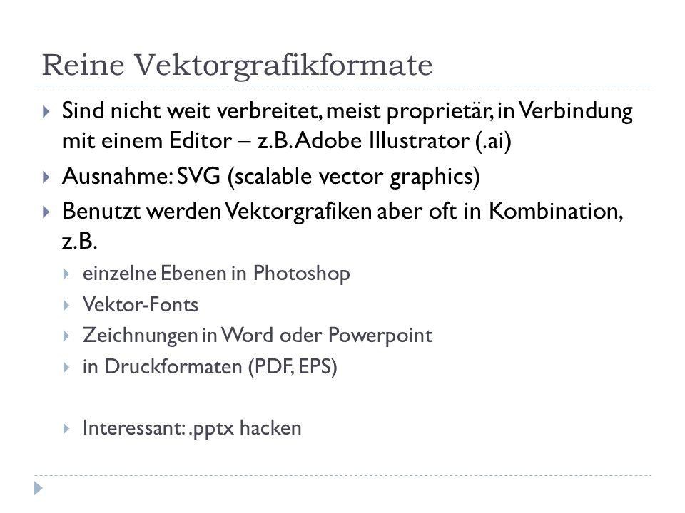 Reine Vektorgrafikformate Sind nicht weit verbreitet, meist proprietär, in Verbindung mit einem Editor – z.B. Adobe Illustrator (.ai) Ausnahme: SVG (s