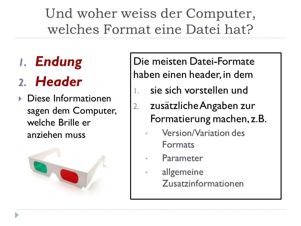 Und woher weiss der Computer, welches Format eine Datei hat? Die meisten Datei-Formate haben einen header, in dem 1. sie sich vorstellen und 2. zusätz