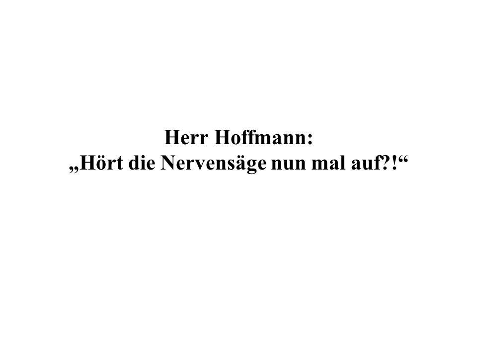 Herr Hoffmann: Hört die Nervensäge nun mal auf !
