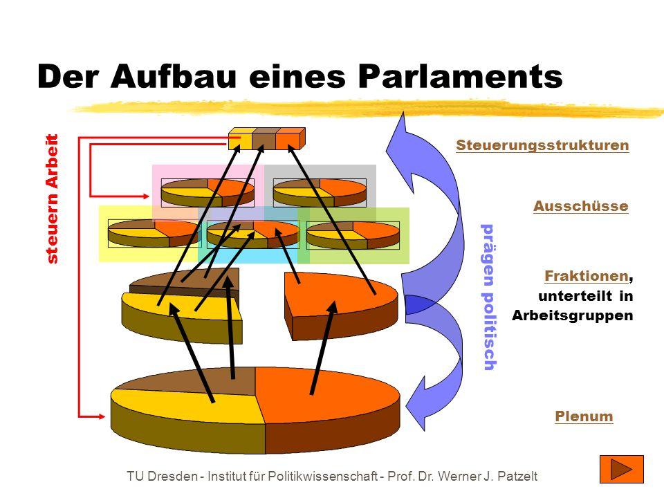 TU Dresden - Institut für Politikwissenschaft - Prof. Dr. Werner J. Patzelt Der Aufbau eines Parlaments Steuerungsstrukturen Plenum FraktionenFraktion