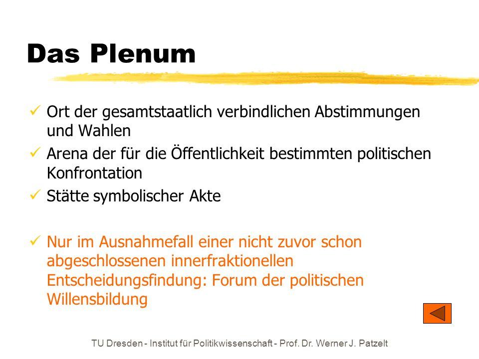 TU Dresden - Institut für Politikwissenschaft - Prof. Dr. Werner J. Patzelt Das Plenum Ort der gesamtstaatlich verbindlichen Abstimmungen und Wahlen A