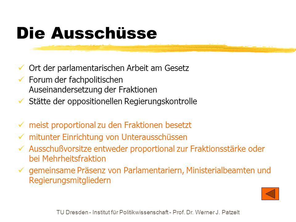 TU Dresden - Institut für Politikwissenschaft - Prof. Dr. Werner J. Patzelt Die Ausschüsse Ort der parlamentarischen Arbeit am Gesetz Forum der fachpo