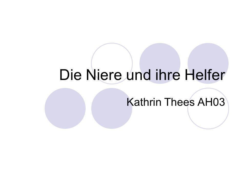 Die Niere und ihre Helfer Kathrin Thees AH03