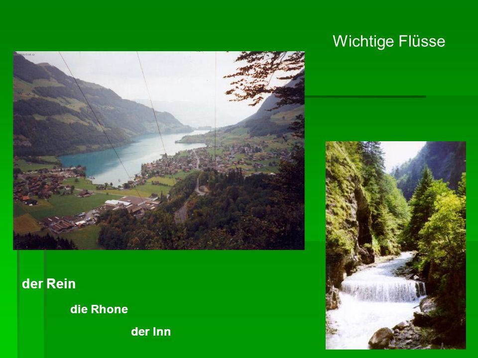 Wichtige Flüsse der Rein die Rhone der Inn