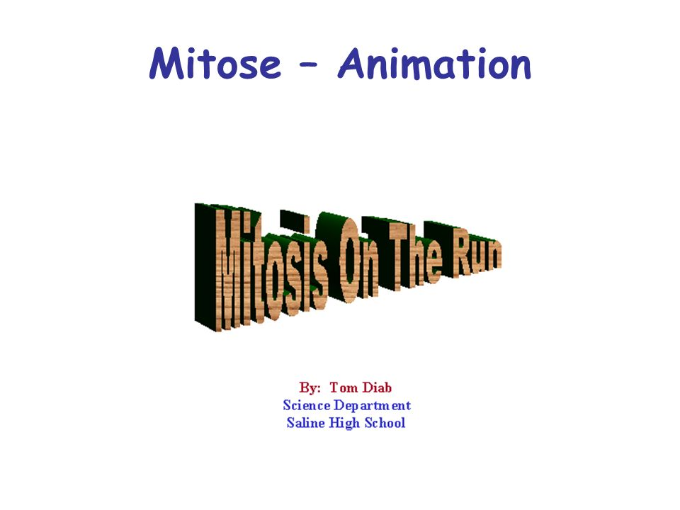Mitose – Animation