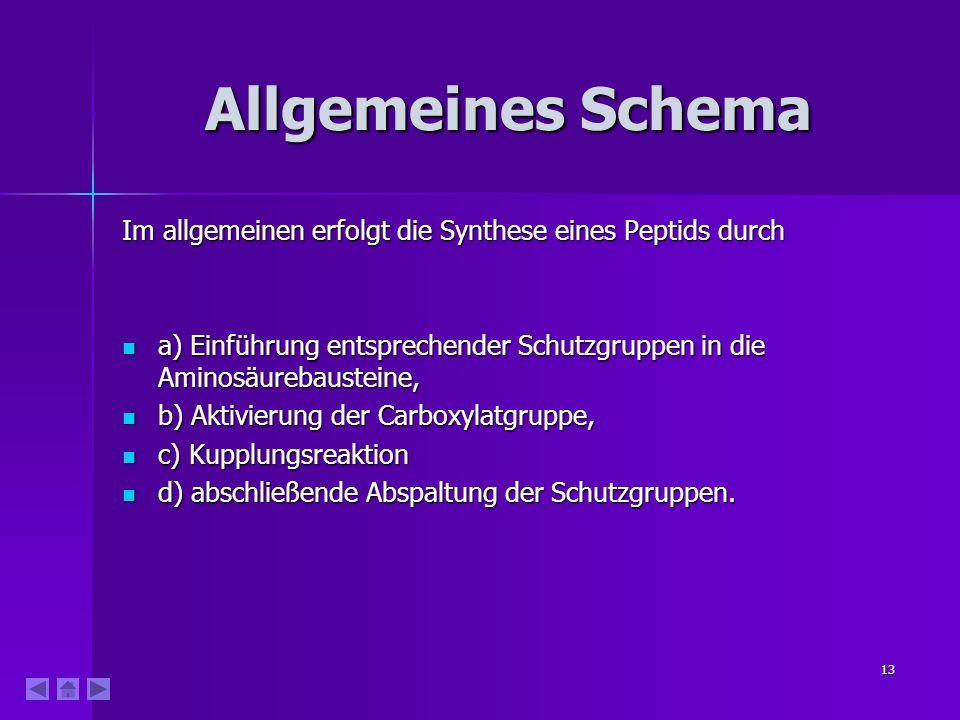 13 Allgemeines Schema Im allgemeinen erfolgt die Synthese eines Peptids durch a) Einführung entsprechender Schutzgruppen in die Aminosäurebausteine, a