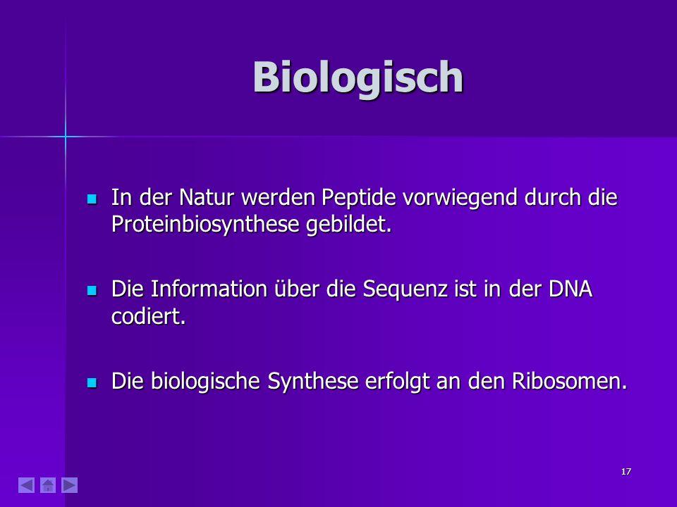 17 Biologisch In der Natur werden Peptide vorwiegend durch die Proteinbiosynthese gebildet. In der Natur werden Peptide vorwiegend durch die Proteinbi
