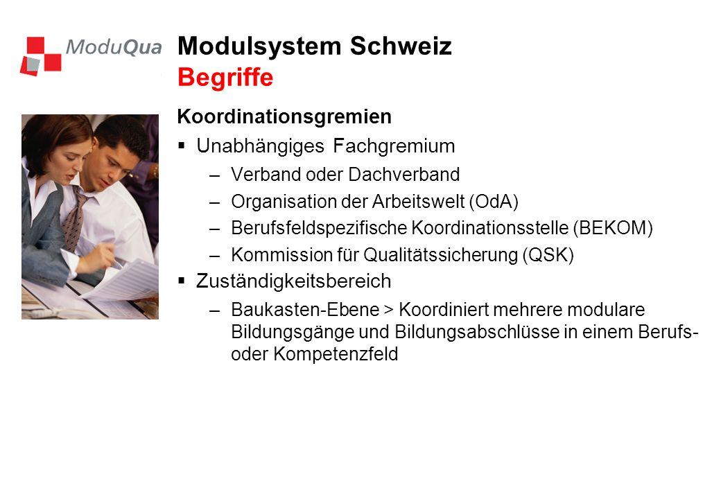 Modulsystem Schweiz Begriffe Koordinationsgremien Unabhängiges Fachgremium –Verband oder Dachverband –Organisation der Arbeitswelt (OdA) –Berufsfeldspezifische Koordinationsstelle (BEKOM) –Kommission für Qualitätssicherung (QSK) Zuständigkeitsbereich –Baukasten-Ebene > Koordiniert mehrere modulare Bildungsgänge und Bildungsabschlüsse in einem Berufs- oder Kompetenzfeld