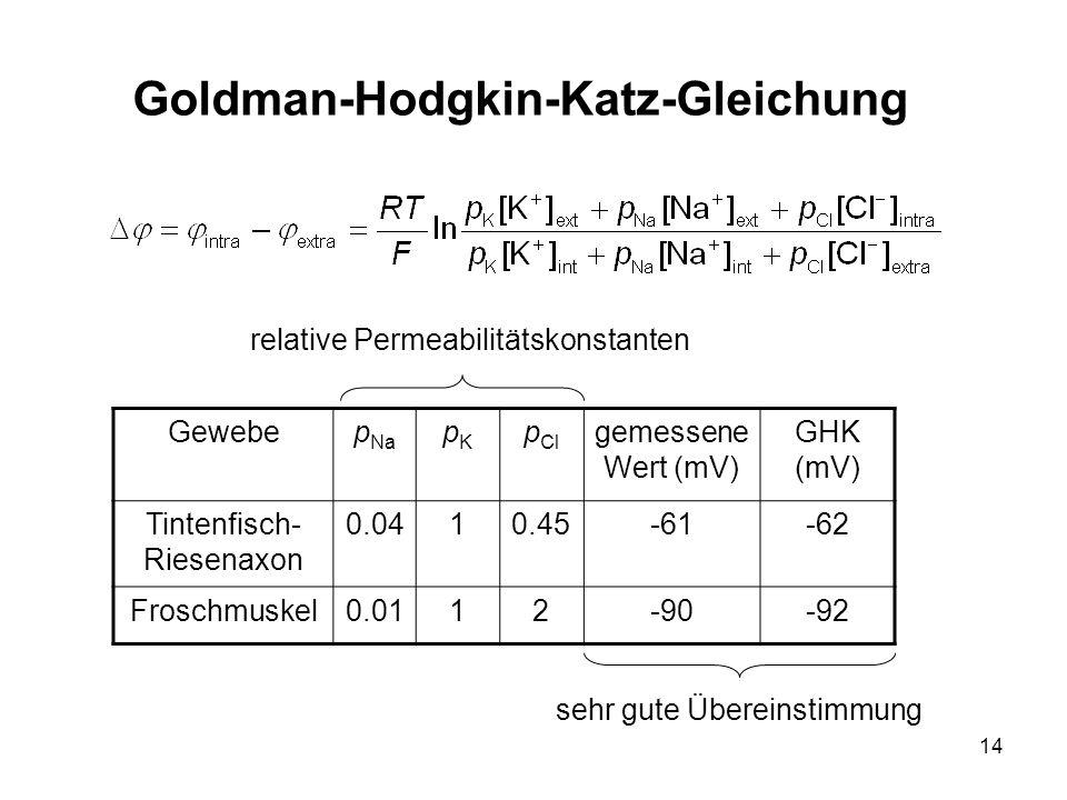 14 Goldman-Hodgkin-Katz-Gleichung Gewebep Na pKpK p Cl gemessene Wert (mV) GHK (mV) Tintenfisch- Riesenaxon 0.0410.45-61-62 Froschmuskel0.0112-90-92 r