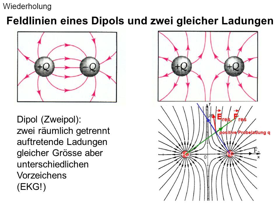 29 Feldlinien eines Dipols und zwei gleicher Ladungen Dipol (Zweipol): zwei räumlich getrennt auftretende Ladungen gleicher Grösse aber unterschiedlic
