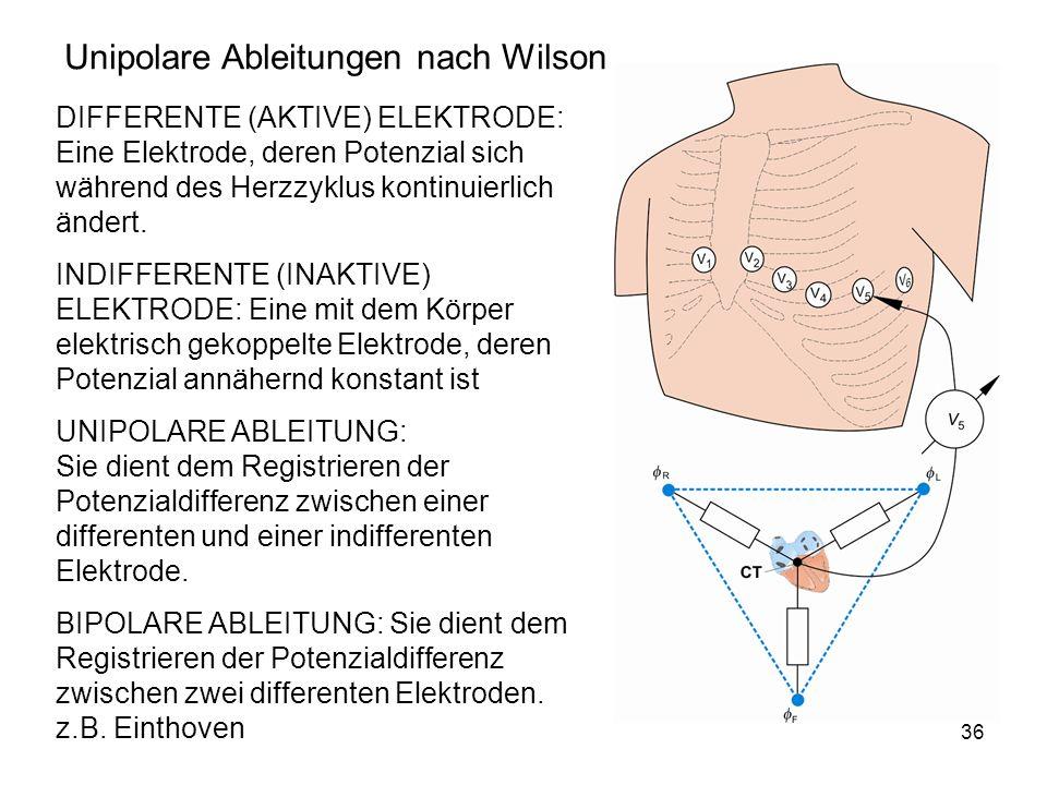 36 Unipolare Ableitungen nach Wilson DIFFERENTE (AKTIVE) ELEKTRODE: Eine Elektrode, deren Potenzial sich während des Herzzyklus kontinuierlich ändert.