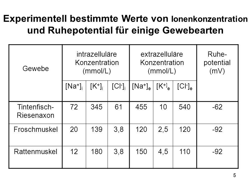 5 Gewebe [Na + ] i [K + ] i [Cl - ] i [Na + ] e [K +] e [Cl - ] e Tintenfisch- Riesenaxon 723456145510540-62 Froschmuskel201393,81202,5120-92 Rattenmu