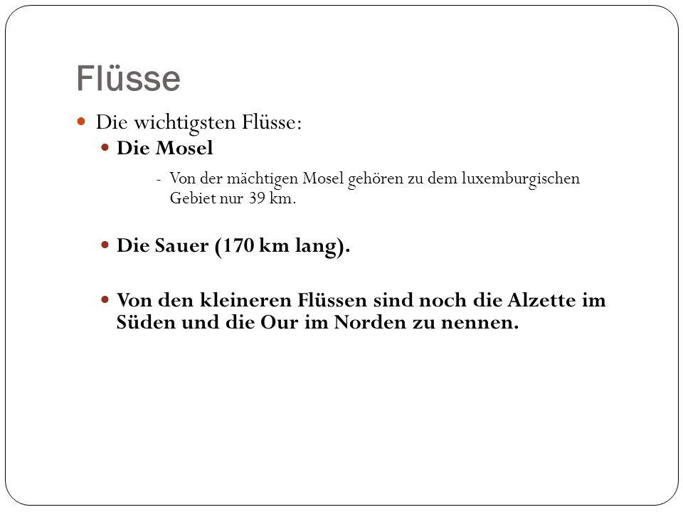 Flüsse Die wichtigsten Flüsse: Die Mosel -Von der mächtigen Mosel gehören zu dem luxemburgischen Gebiet nur 39 km.