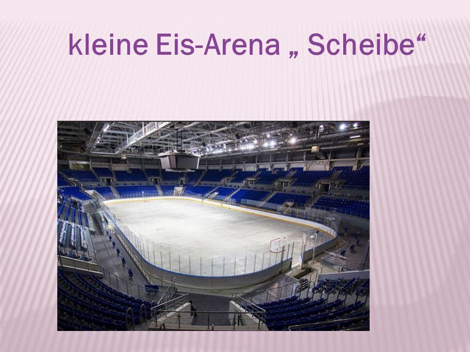 kleine Eis-Arena Scheibe