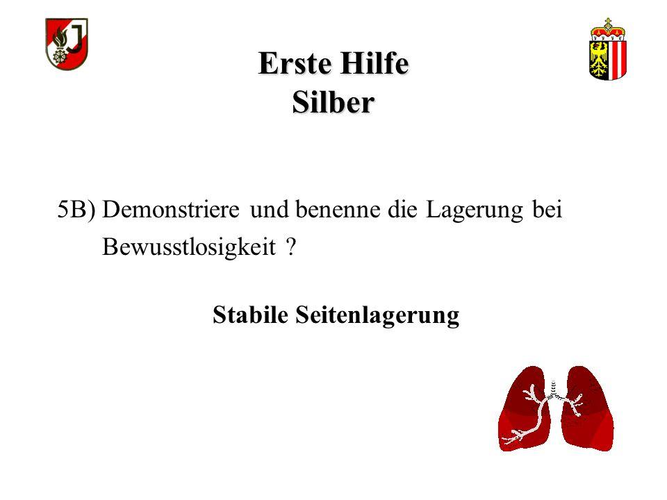Erste Hilfe Silber Stabile Seitenlagerung 5B) Demonstriere und benenne die Lagerung bei Bewusstlosigkeit ?
