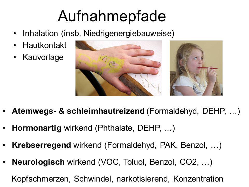 Aufnahmepfade Inhalation (insb.