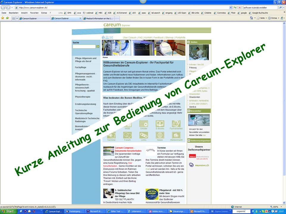 Kurze Anleitung zur Bedienung von Careum-Explorer
