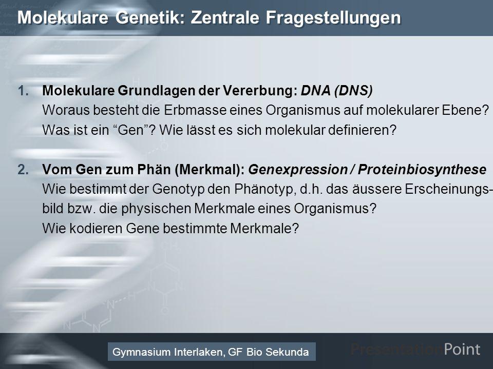 Here comes your footer Page 11 Molekulare Genetik: Zentrale Fragestellungen 1.Molekulare Grundlagen der Vererbung: DNA (DNS) Woraus besteht die Erbmasse eines Organismus auf molekularer Ebene.