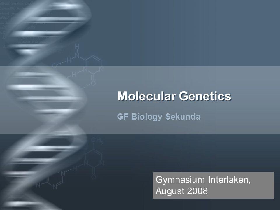 Your Logo Molecular Genetics GF Biology Sekunda Gymnasium Interlaken, August 2008