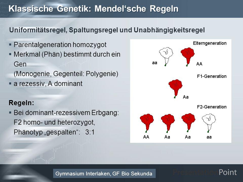 Here comes your footer Page 38 Molekulare Genetik: Vom Gen zum Merkmal 3.Enzym (Protein als Reaktionskatalysator): Aminosäuresequenz Gymnasium Interlaken, GF Bio Sekunda Welche Funktionen übernehmen Proteine im Organismus.