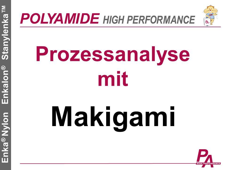 2 Roth Stefan Polyamide High Performance GmbH Enka ® Nylon Enkalon ® Stanylenka Makigami