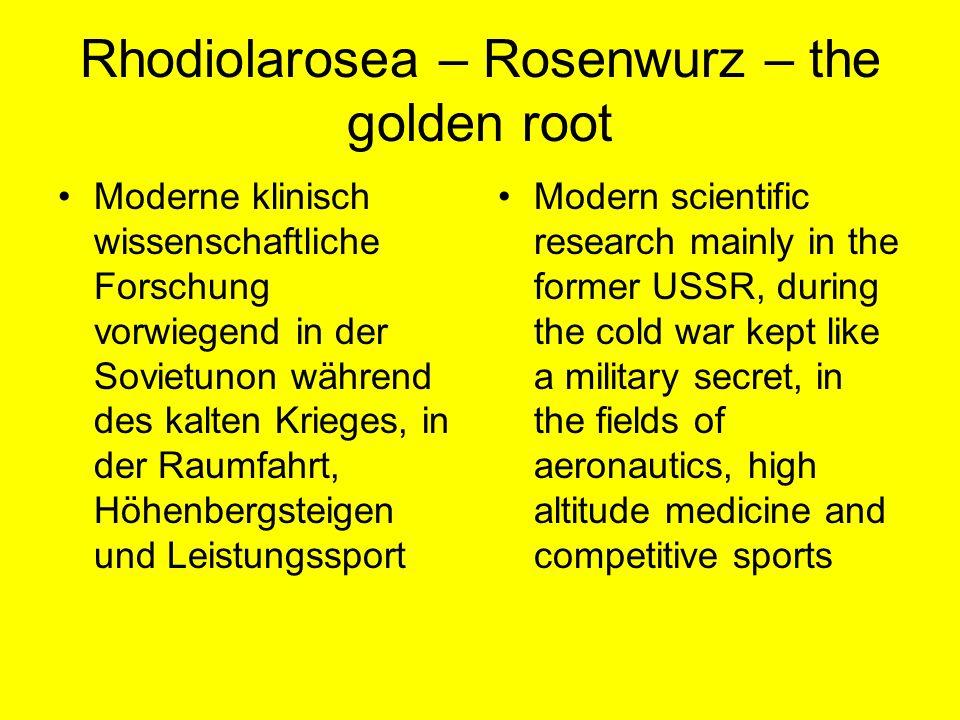 Rhodiolarosea – Rosenwurz – the golden root Moderne klinisch wissenschaftliche Forschung vorwiegend in der Sovietunon während des kalten Krieges, in d