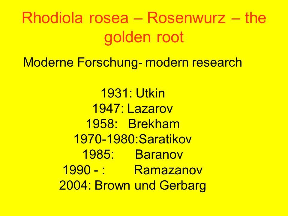 Rhodiola rosea – Rosenwurz – the golden root Moderne Forschung- modern research 1931: Utkin 1947: Lazarov 1958: Brekham 1970-1980:Saratikov 1985: Bara