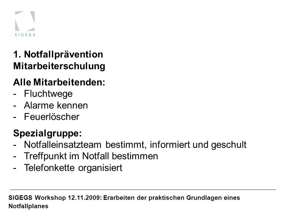SIGEGS Workshop 12.11.2009: Erarbeiten der praktischen Grundlagen eines Notfallplanes 1.Notfallprävention Mitarbeiterschulung Alle Mitarbeitenden: -Fl