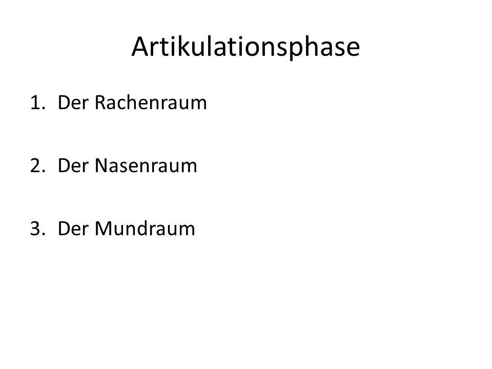 Artikulationsphase 1.Der Rachenraum 2.Der Nasenraum 3.Der Mundraum