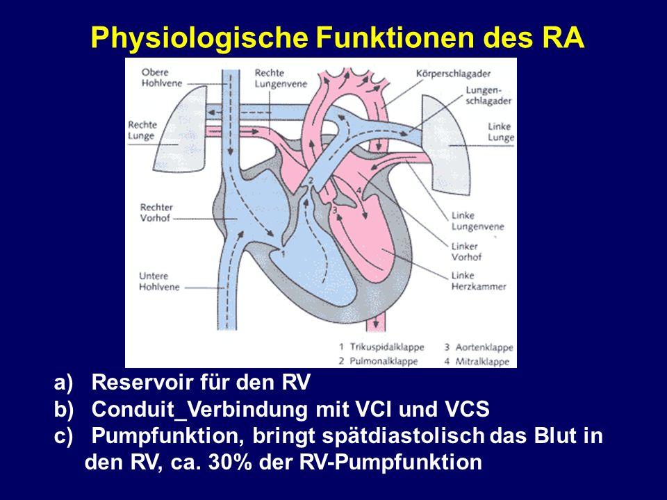 Physiologische Funktionen des RA a)Reservoir für den RV b)Conduit_Verbindung mit VCI und VCS c)Pumpfunktion, bringt spätdiastolisch das Blut in den RV, ca.