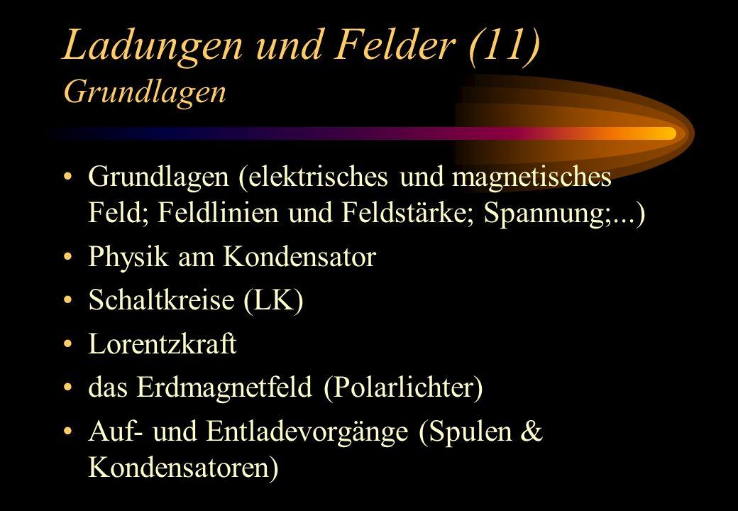 Ladungen und Felder (11) Grundlagen Grundlagen (elektrisches und magnetisches Feld; Feldlinien und Feldstärke; Spannung;...) Physik am Kondensator Sch