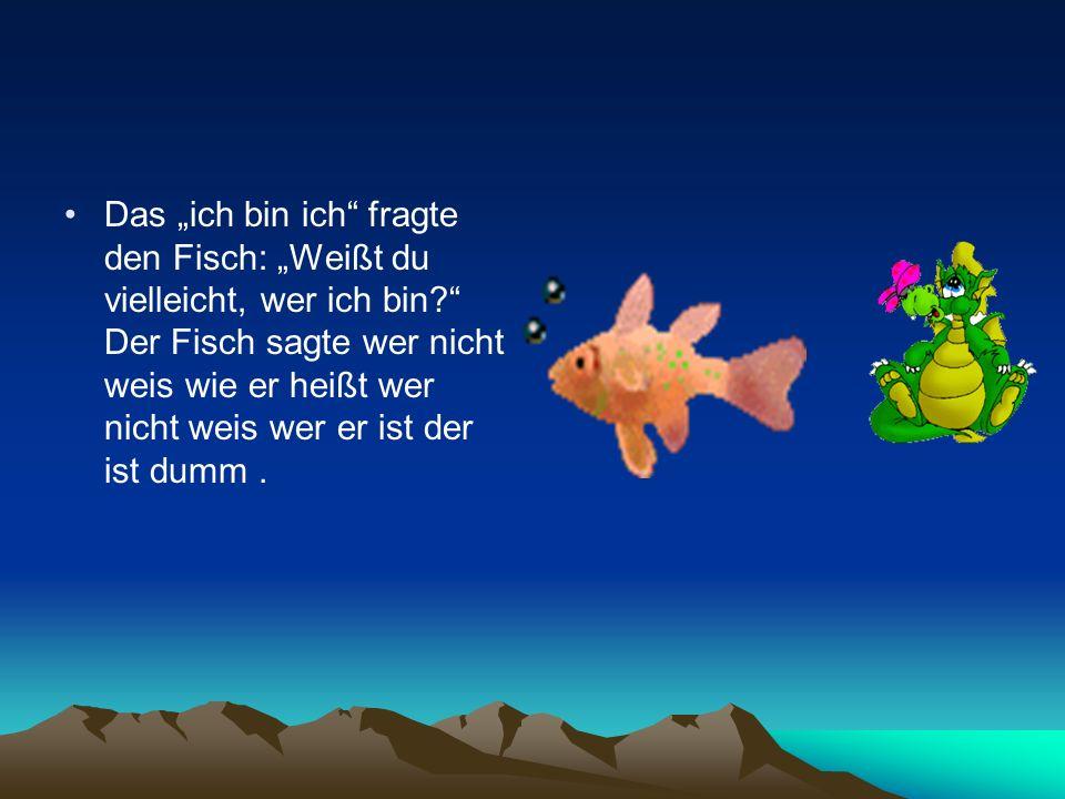 Das ich bin ich fragte den Fisch: Weißt du vielleicht, wer ich bin? Der Fisch sagte wer nicht weis wie er heißt wer nicht weis wer er ist der ist dumm
